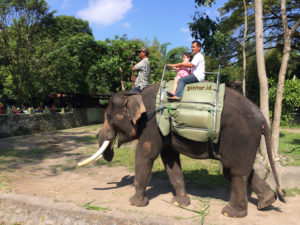 Kebun Binatang Gembira Loka wisata.pintar.id 3
